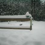 Big Snow09 morning after